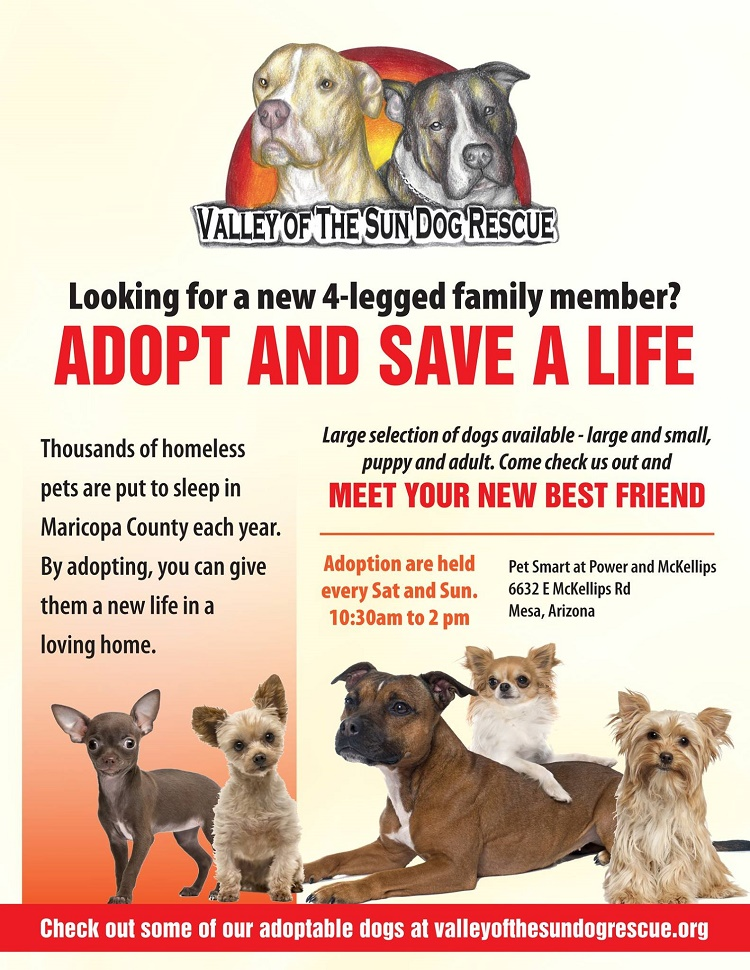Adoption Banner Valley Of The Sun Dog Rescue